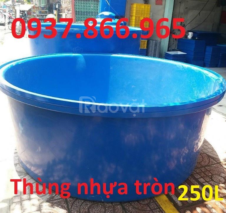 Thùng nuôi cá, thùng nhựa kích thước lớn, thùng chứa nước