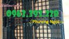 Pallet nhựa kê hàng, pallet dùng cho xe nâng, pallet cao cấp (ảnh 7)