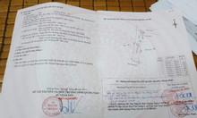 Bán lô đất 1000m2 xã Tam Thạnh, huyện Núi Thành, Quảng Nam, giá tốt.