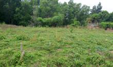 Bán đất mặt tiền 270m2 Nguyễn Thị Măng, Thái Mỹ, Củ Chi.