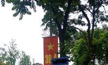 Bán đất phố Nguyễn Thái Học, Ngõ đẹp 45m2, mt 3.6m chỉ 4 tỷ
