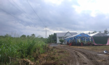 Cần bán 1 mẫu đất gần mặt tiền Bàu Cạn, Long Thành 70x140 giá 5 tỷ.