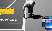 Cần mua sơn kẻ vạch seamaster màu vàng giá rẻ tại quận 9 TPHCM