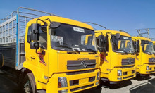 Xe tải dongfeng 8 tấn thùng 9m5 nhập khẩu