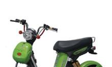 Xe đạp điện Nijia chính hãng mua ở đâu vừa đẹp vừa rẻ