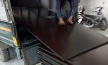 Ván ép phủ phim, cốp pha phủ phim giá rẻ tại Ninh Bình