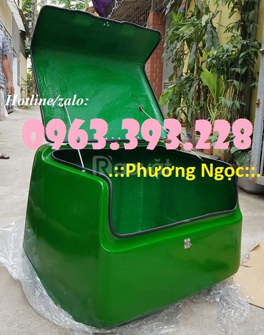 Thùng giao hàng gắn sau xe máy, thùng chở hàng nhựa composite
