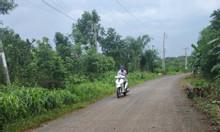 Bán đất gần mặt tiền đường thông liên tỉnh Bàu Cạn, Long Thành