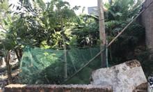 Bán mảnh đất tại Xuân Bách, Quang Tiến, Sóc Sơn