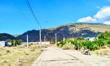 Mua đất sang - Đón mưa lộc vàng với sản phẩm đất nền Nam Ninh Thuận
