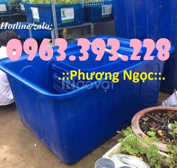 Thùng nhựa dung tích lớn, thùng nhựa công nghiệp, thùng nuôi cá