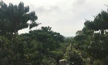 Khu nghỉ dưỡng Bảo Lộc Lâm Đồng 9000m2