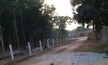 Bán đất mặt tiền QL22B, huyện Châu Thành, Tây Ninh, 1.044m2
