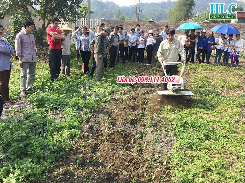 Giới thiệu nơi mua máy cày xới đất mini tại Hà Nội