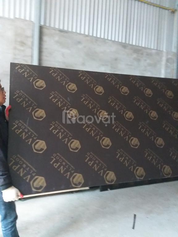 Cốp pha phủ phim giá rẻ tại Bắc Ninh
