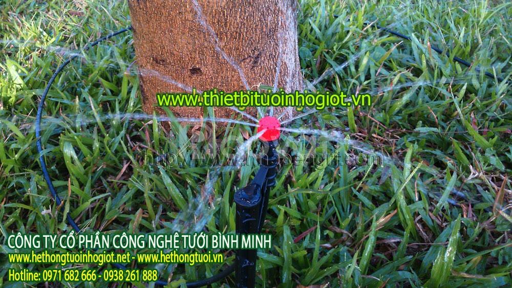 Hệ thống tưới nhỏ Tây Ban Nha, hệ thống tưới nhỏ giọt cho rau