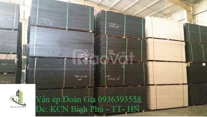Cốp pha phủ phim giá rẻ tại Thanh Hóa