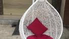 Ghế xích đu tổ chim, ghế xích đu trứng (ảnh 6)