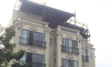 Cho thuê nhà căn đôi ở Phú Mỹ Hưng làm spa, nhà hàng