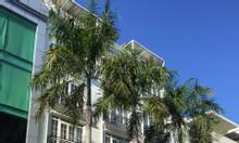 New Apartment! Nguyên căn 38 phòng ở Phú Mỹ Hưng, Quận 7 cần cho thuê