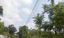 Cần bán đất nền khu vực đông dân cư gần
