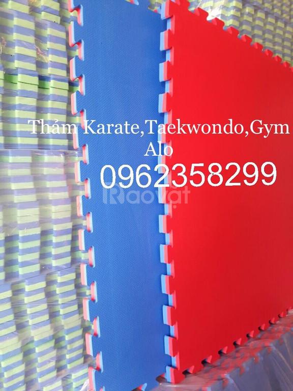 Thảm tập taewondo, karate, vovinam