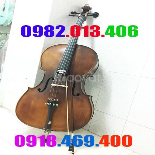 Giá bán đàn cello rẻ bền âm thanh hay giá đại lý
