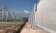 Nhà lưới nông nghiệp politiv, lưới chống côn trùng israel