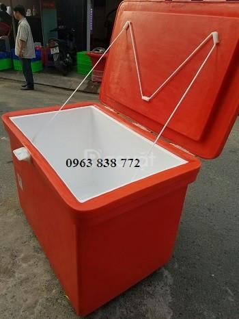 Thùng giữ lạnh thailand dung từ từ 100 lít đến 800 lít.