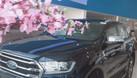 Ford Everest màu mới với nhiều nâng cấp và khuyến mãi đầu năm (ảnh 5)