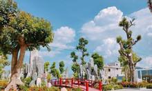Bán đất liền kề thuộc dự án Xuân An Greenpark, Nghi Xuân, Hà Tĩnh