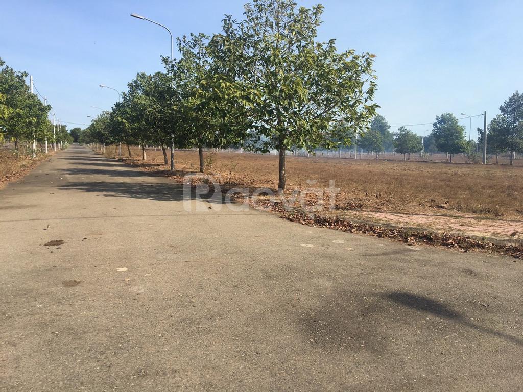 Đất BR- VT giá rẻ chỉ 7-8 triệu/m2 với  100% thổ cư nằm ngay quốc lộ 5