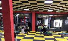 Thảm xốp phòng gym và thảm cỏ