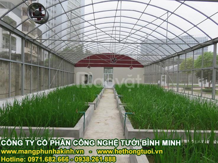 Lưới chắn côn trùng politiv,lưới chống côn trùng nông nghiệp, lưới
