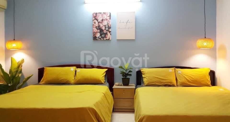 Cho thuê nhà làm homestay, đường Phan Chu Trinh, TP.Vũng Tàu