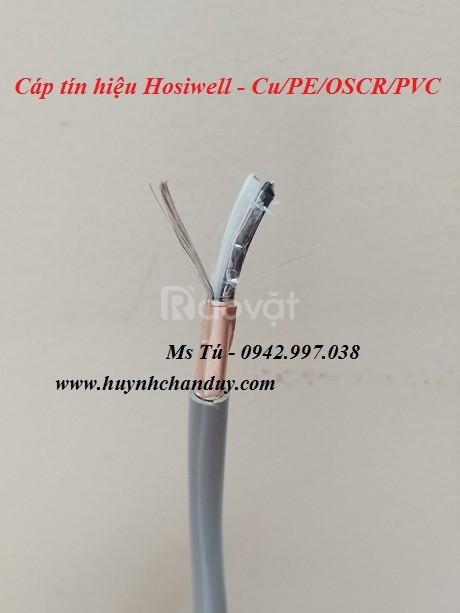Cáp tín hiệu 2x16AWG Hosiwell Thái Lan, 305m/cuộn xoắn đôi chống nhiễu