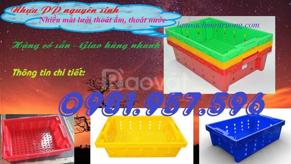 Sóng nhựa cá, sọt nhựa trưng bày rau củ, sọt nhựa cao 15cm (ảnh 4)