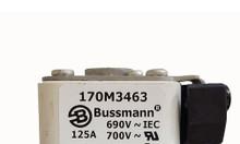 Cầu chì bussmann 170m3463