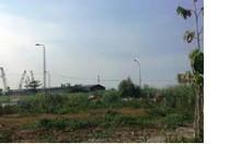 Bán gấp đất cao su xã Phước Lộc, Đạ Huoai, sổ hồng riêng, tiện đầu tư