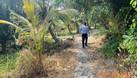 Cần bán đất trồng cây giá yêu thương cho nông dân huyện Bến Lức (ảnh 2)