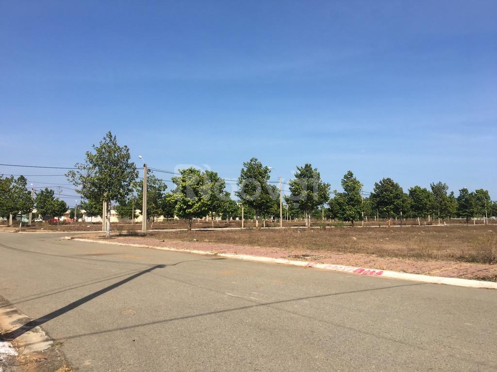 Đất thổ cư 100% đã có sổ, giá chỉ 730 triệu /m2