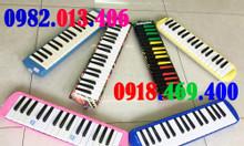 Kèn melodion 32 phím chính hãng các loại giá sỉ ship toàn quốc