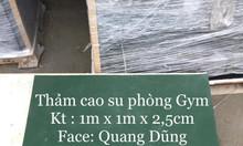 Thảm cao su gym 1m x 1m x 2,5cm