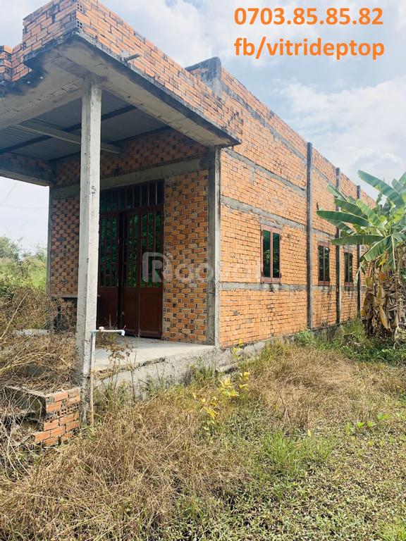 Cần bán đất trồng cây giá yêu thương cho nông dân huyện Bến Lức (ảnh 4)