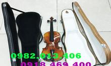 Nơi cung cấp hộp đựng đàn violin tất cả size giá rẻ hàng chất lượng