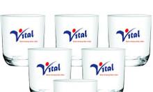 Xưởng in thủy tinh giá rẻ tại Quảng Nam, cung cấp cốc sứ