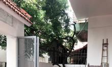 Bán nhà dân xây tại phường Gia Thụy đất 86m2 nhà 3 tầng Đông Nam