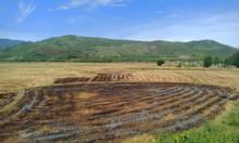 Bán đất mặt tiền Cao Bá Quát giá chỉ 800 triệu Diên Thọ