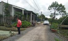 Bán đất mặt tiền đường nhựa xã Phước Hậu, Cần Giuộc