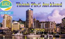 Tư vấn du học thành phố Auckland – New Zealand